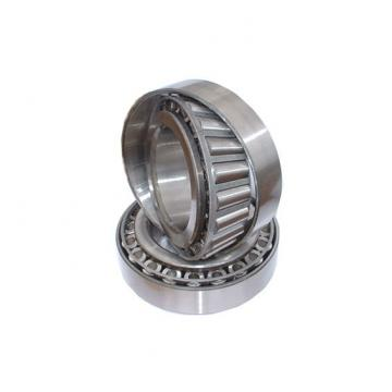 NSK 6006DDUCM  Single Row Ball Bearings